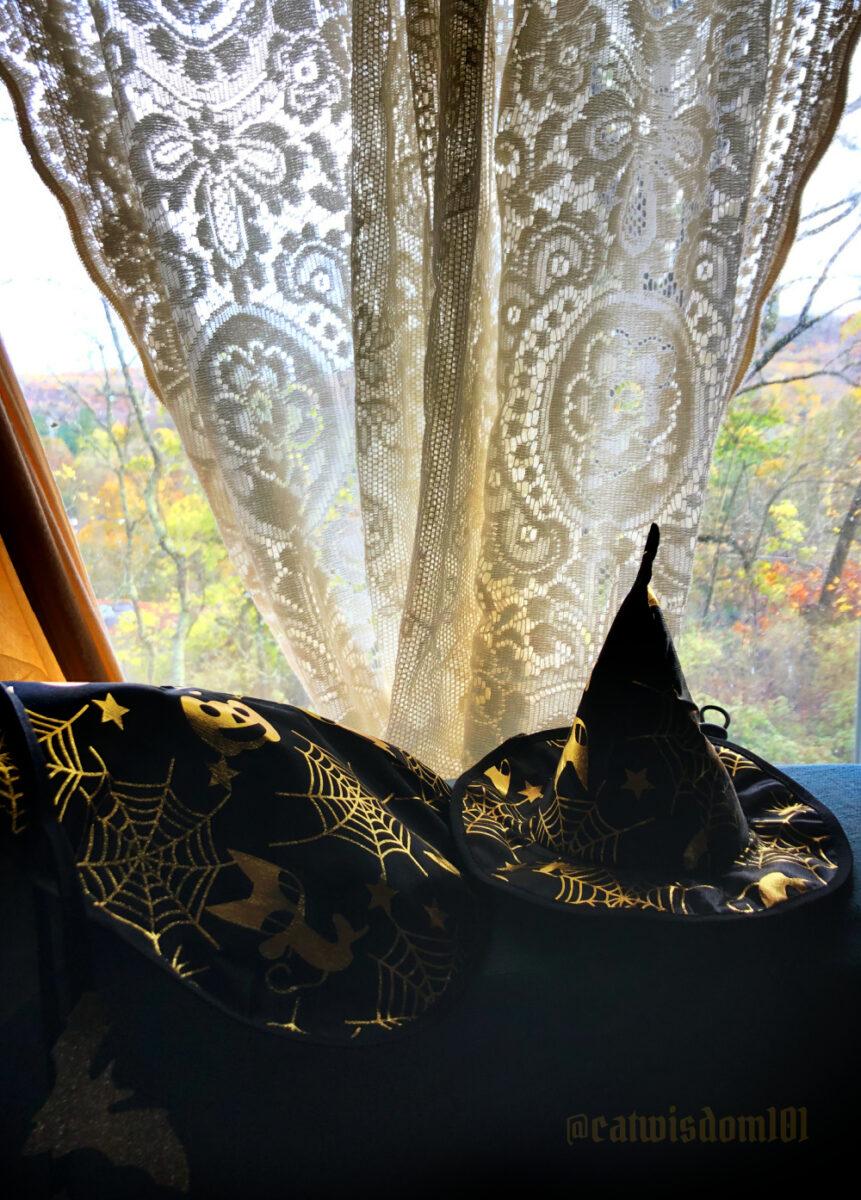 cat wizard halloween costume