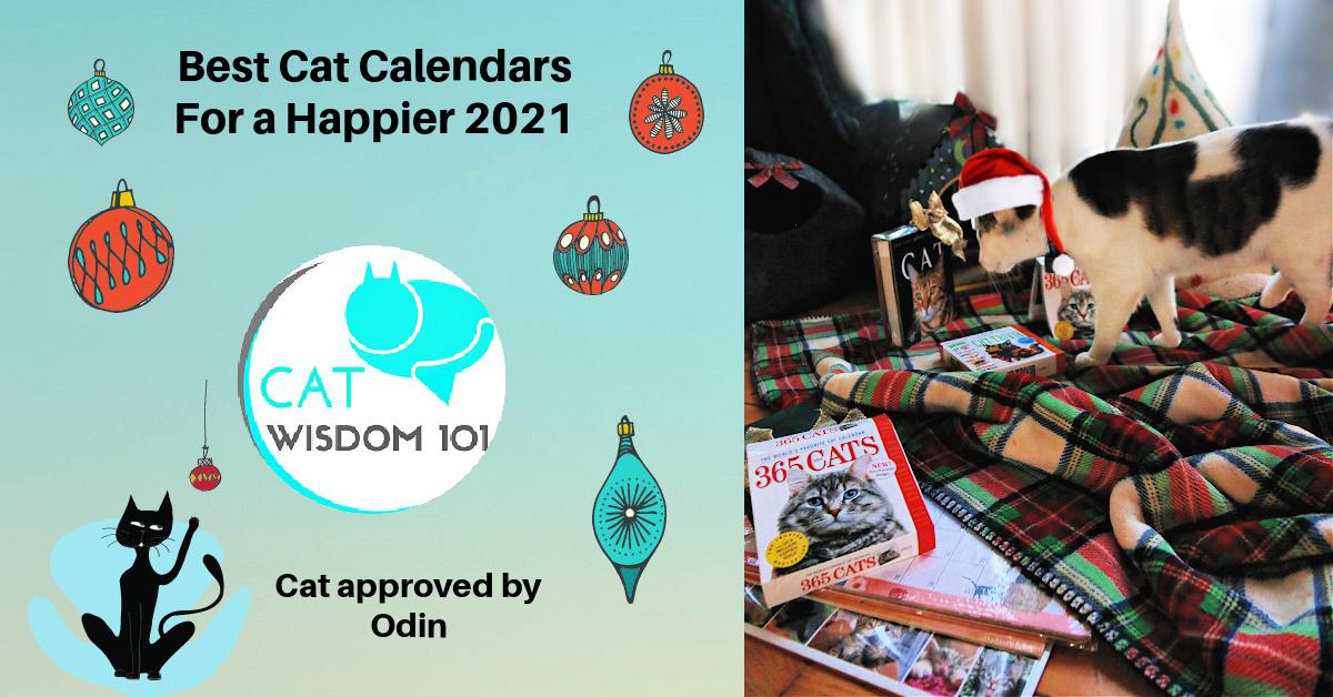 best 2021 cat calendars