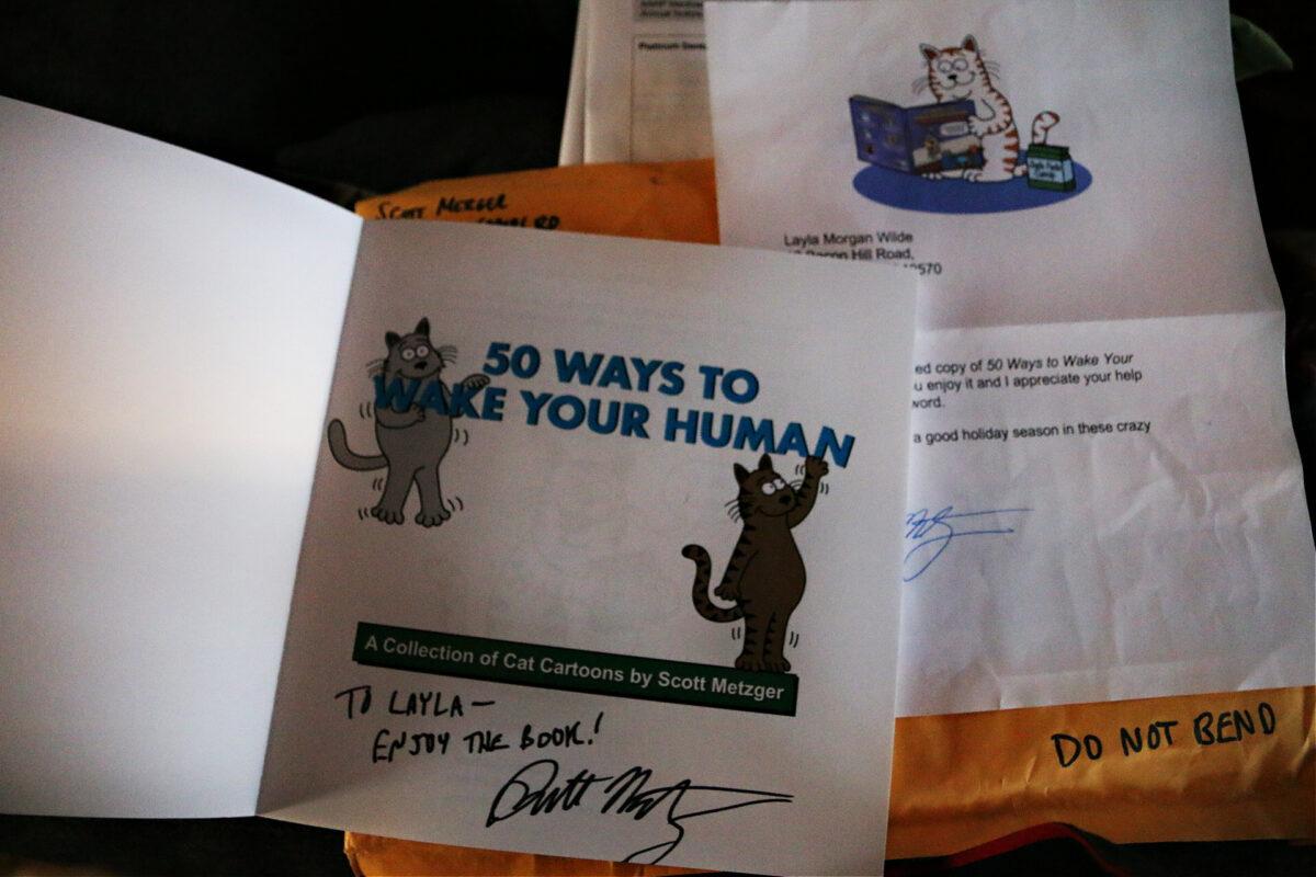 50 ways to wake your human cat cartoon book