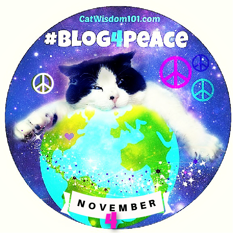blog 4 peace cat domino