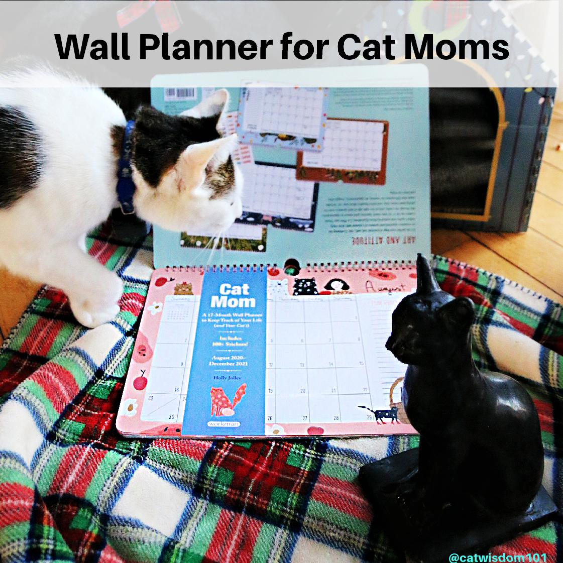 wall planner cat calendar