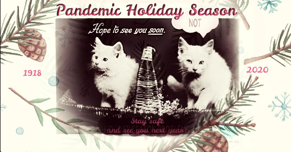 pandemic christmas cats