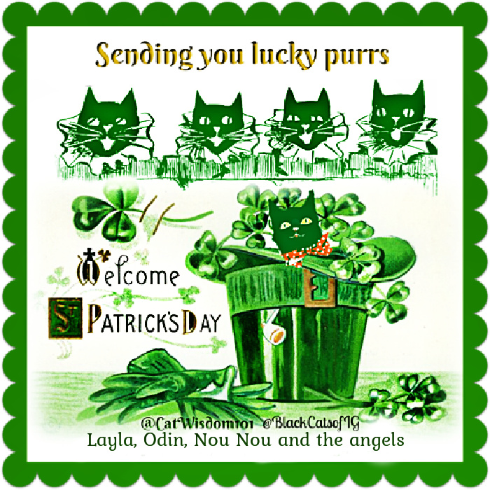 st. patrick's day cats art