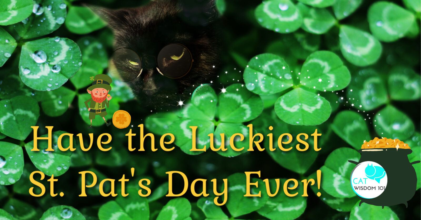 st. patrick's day cats